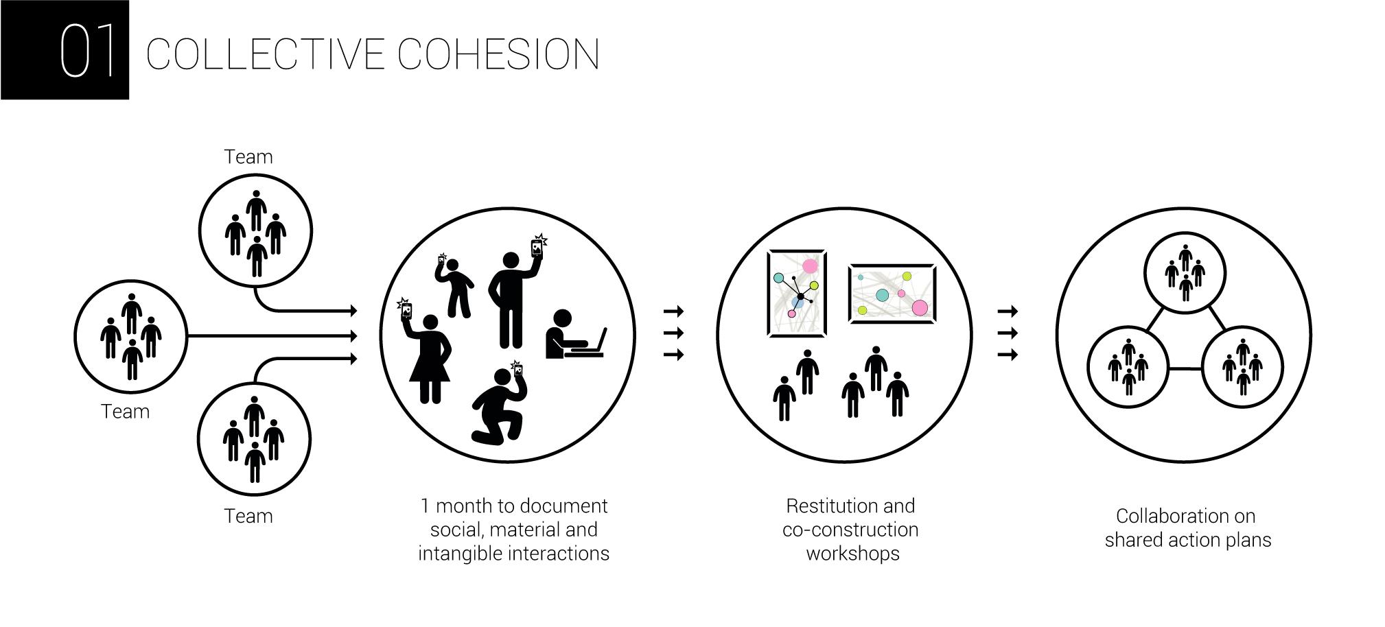 AnthropoviZ - collective cohesion